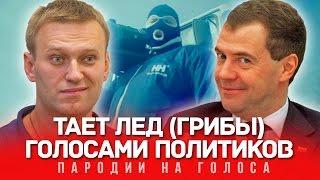 Download ТАЕТ ЛЁД Голосами Политиков (Грибы) Mp3 and Videos