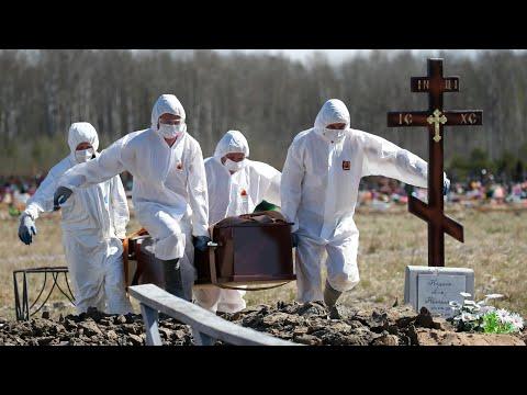 Самая высокая смертность в России. Коронавирус в Питере