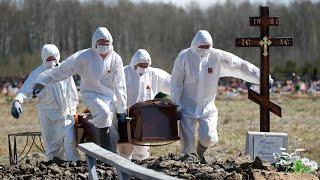 Самая высокая смертность в России Коронавирус в Питере