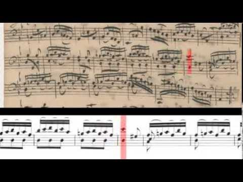 BWV 1008 - Cello Suite No.2 (Scrolling)