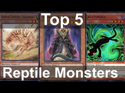 YuGiOh! Top 5 Reptile Monsters In The Game! (Reptilian Army Ain't Got Nothing On Us)