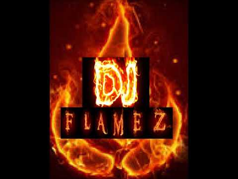DJ FLAMEZ-martin Garrix And Moti-virus(remix)