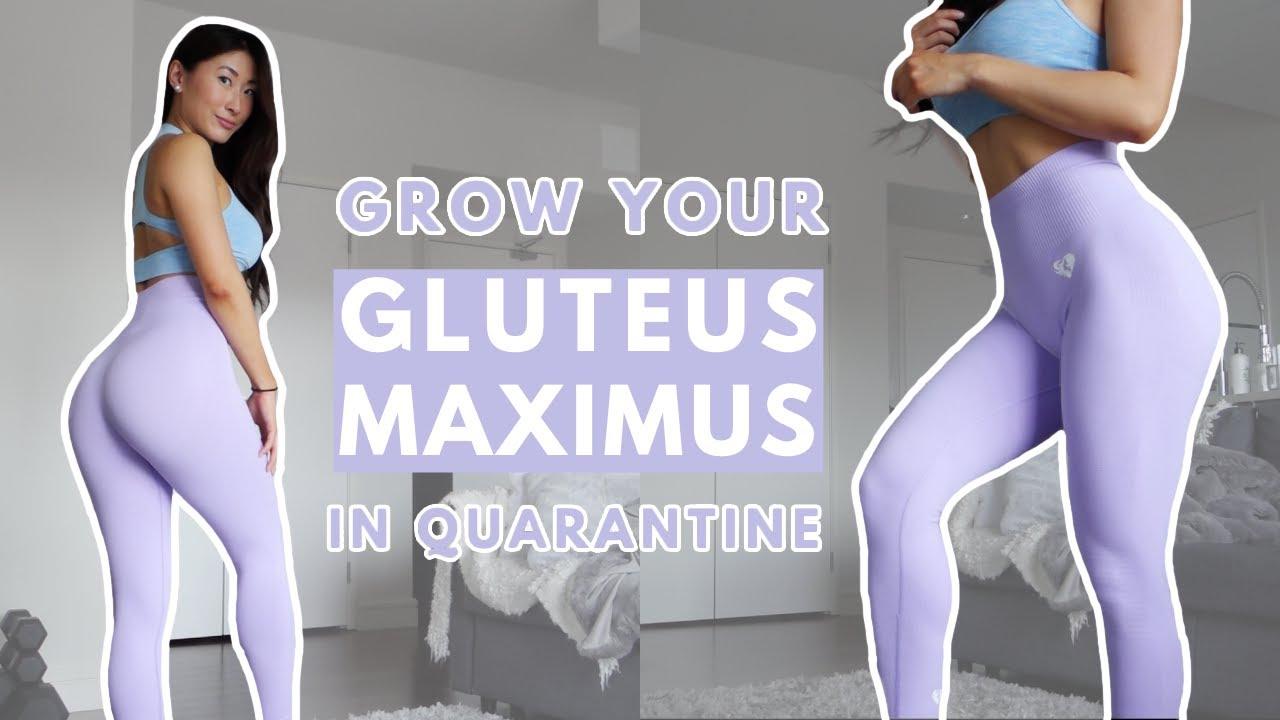 hogyan lehet fogyni a gluteus maximusban bento dobozos étkezés a fogyáshoz