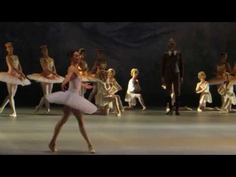 Ekaterina Krysanova - Don Quixote