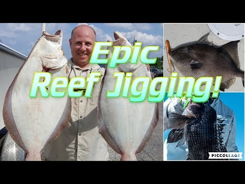 3 Fluke 20lb Limit: Jigging NJ Reefs!