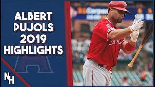 <b>Albert Pujols</b> 2019 Highlights