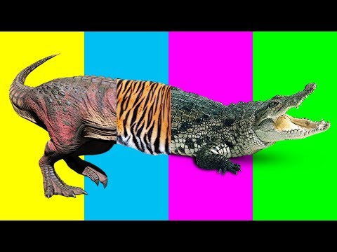 Thumbnail: Wrong Body Zoo Animals Dinasour T rex Tiger Crocodile Nursery Rhymes Farm Animals For Kids Learn