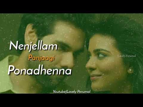 Hey Penne Penne-Kattapava Kanum|Love WhatsApp Status|Video By Lovely Perumal|
