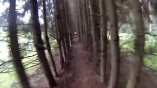 "просмотр трассы redBike Cup: ""Dark Forest Ride"""