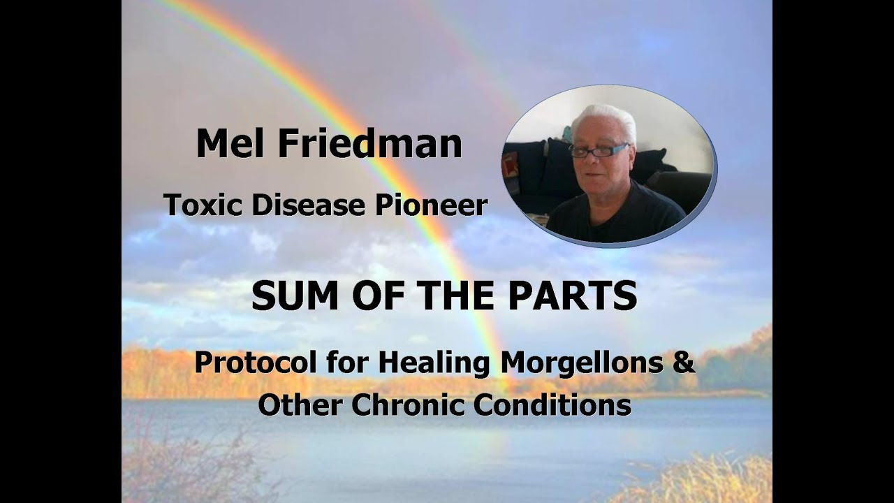 Sum of the Parts - Mel Friedman's Protocal for Healing Morgellons (July 1,  2018)