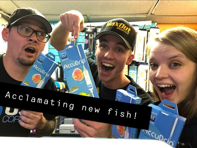 Acclimating your NEW fish ! with Scott, Salty Ali, and Freshwater Joe