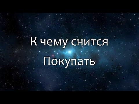 К чему снится Таракан (Сонник, Толкование снов)