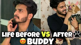 Life Before Vs After Buddy    Happy 3 Months Journey❤   Dog Lovers   Brown Munde    Shub Buddy
