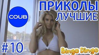 Лучшие приколы в COUB №10 BingoDingo