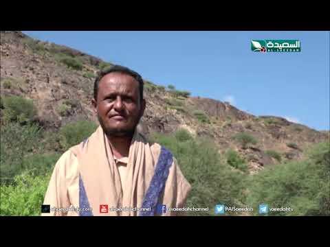 حفريات في الصبيحة بمحافظة لحج بحثاً عن الكنوز (18-10-2019)