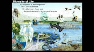 Timothy Krantz - New Initiatives for Restoring the Salton Sea