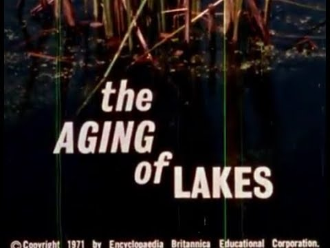 The Aging of Lakes: Eutrophication, Algae Growth, Carp in the Great Lakes