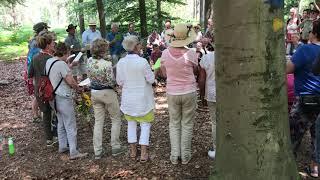 Garden Rumours   'nDrom XX   6 juli 2019   Idinkbos   op Sinderen