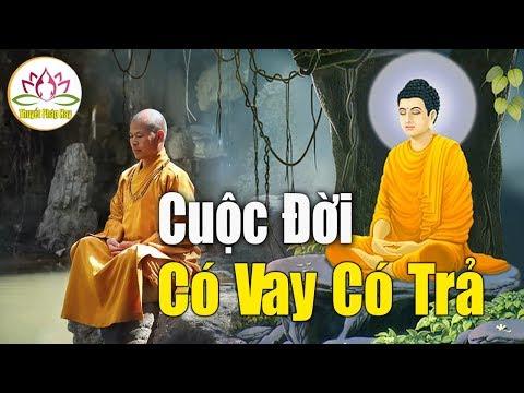 Đêm Khuya Khó Ngủ Nghe Những Câu Chuyện Nhân Quả Phật Còn Tại Thế  Giúp Tĩnh Tâm Ngủ Ngon  _ Rất Hay
