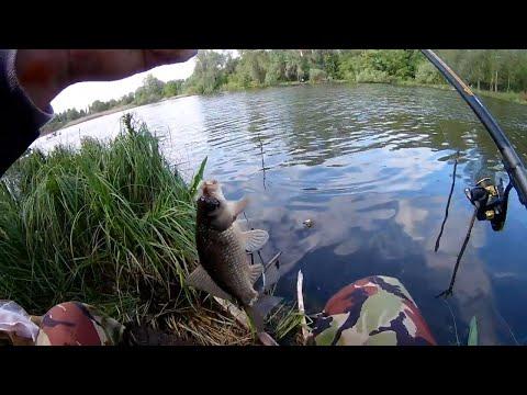 Рыбалка на поплавок на карася простая прикормка