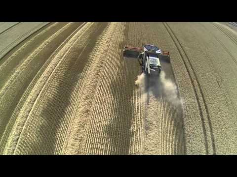AWT Farm Services Harvesting Wheat 9th August 2015