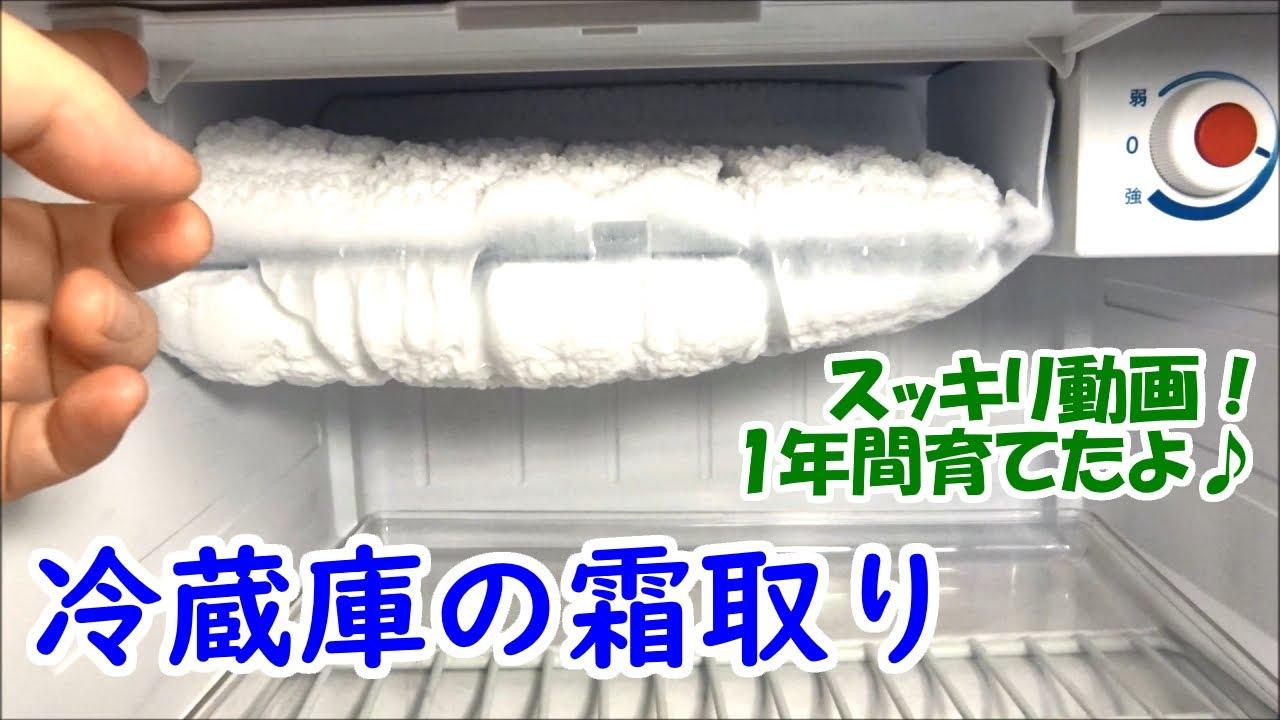 【1年間育てた】冷蔵庫(冷凍庫)の霜取り 2020【スッキリ動画】