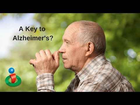 Why This Could Be a Key Cause to Alzheimer's