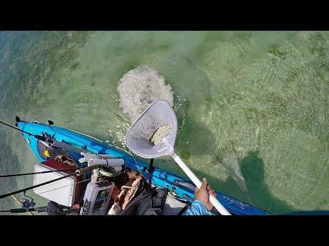 DIY Bait Net (Bonefish Net)