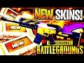 NEW RAIDER CRATE OPENING + TRIUMPH CRATE OPENING! PUBG WEAPON SKINS CASE UPDATE #8 (Player Unknown)