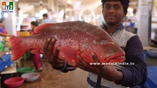 #Incredible Red Snapper Fish Cutting   #Amazing Red Snapper Fish Cutting  
