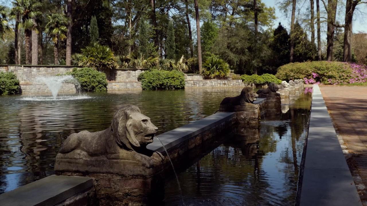 FIELDTRIP: Norfolk Botanical Garden - YouTube