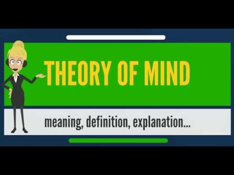 What is THEORY OF MIND? What does THEORY OF MIND mean? THEORY OF MIND meaning & definition