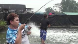 SINGAPORE GT FISHING POND