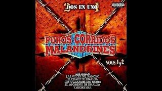 Las Voces Del Rancho - Engordando El Marrano