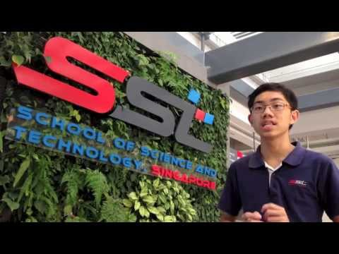 SST 1 to 1 Learning