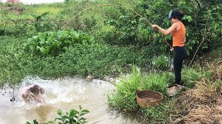 Catching MONSTER Gourami in TINY Creek after STORM
