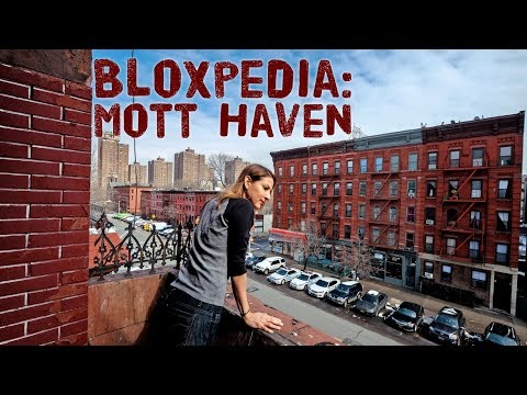 Bloxpedia: Mott Haven