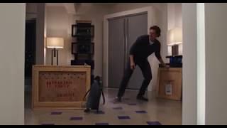 Пингвины мистера Поппера 2011 - подарок