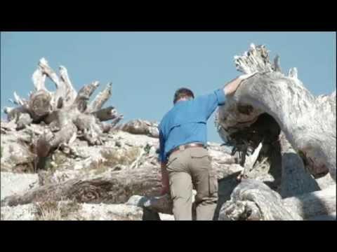 Repórteres Visitam Vulcão Adormecido Que Destruiu Cidade Chilena Há 10 Anos