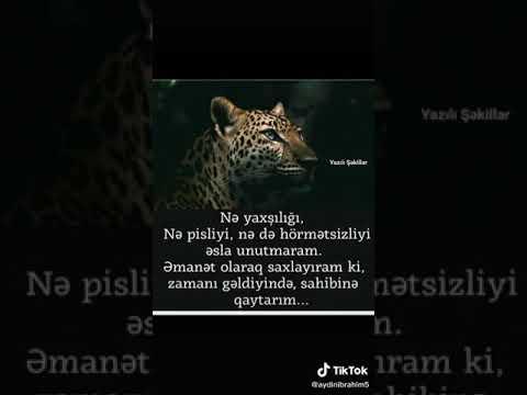 Nə yaxşılığı unutmaram Nə də pisliyi ƏMANƏT OLARAQ SAXLAYIRAM