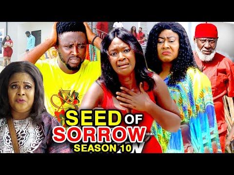 Download SEED OF SORROW SEASON 10 - (New Hit Movie) Onny Michael 2020 Latest Nigerian Nollywood Movie Full HD