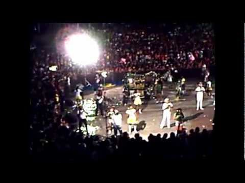 boi de carnaval de maceio  2008 cao de raca e cobra negra.wmv