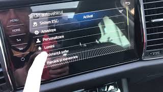 Personal @ Virtual Cockpit By Skoda Kodiaq