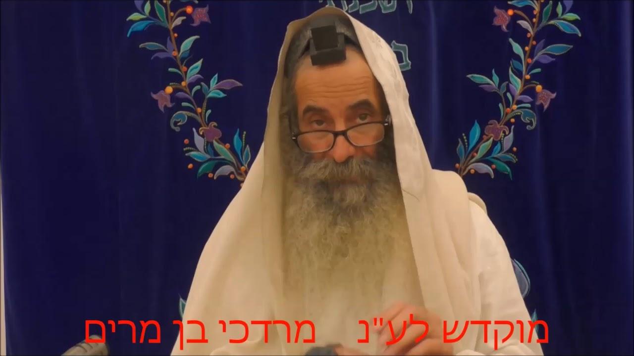 זוהר בקטנה פרשת כי תצא ליום ה' מפי רבי יעקב יוסף כהן
