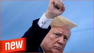 Gipfel in Berlin: Viel deutet darauf hin, dass Trump Sprengung der Nato vorbereitet