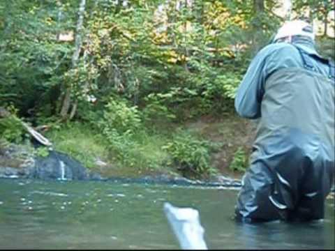 Kalama river washington fly fishing for summer run for Kalama river fishing