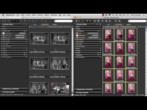 Splitting and merging catalogs | Media Pro Tutorial