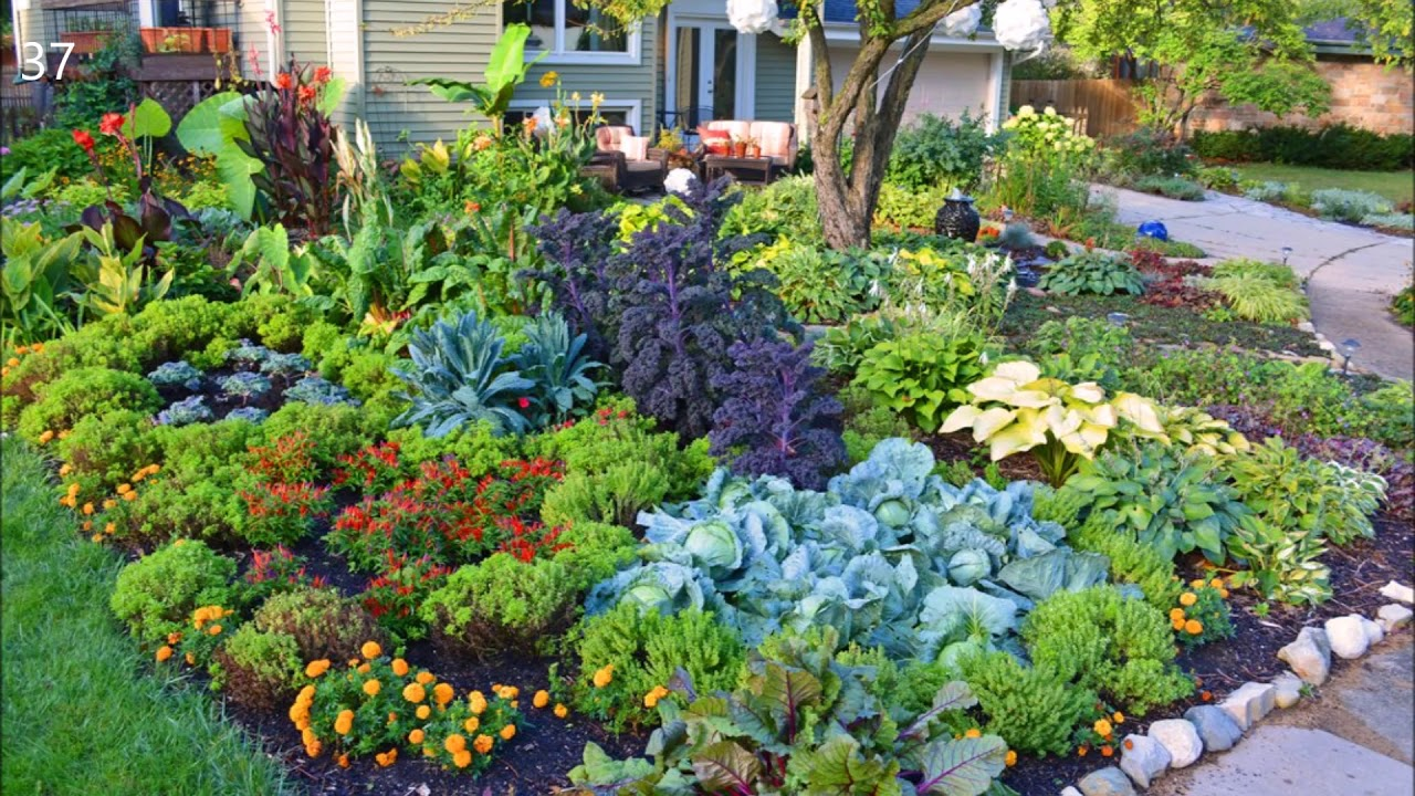 Vegetable garden Potager design Ideas - YouTube