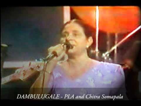 DAMBULUGALE - P.L.A. Somapala and Chitra Somapala