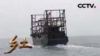 《乡土》 20190503 新盈港里渔家忙| CCTV农业